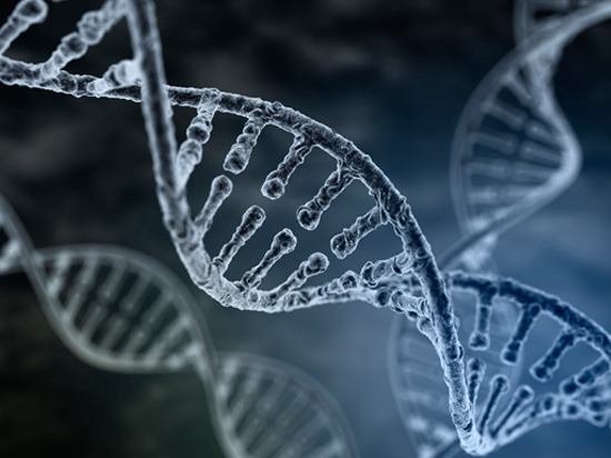 DNA profiles are collected from criminals, crime scenes, and sexual assault forensic exams